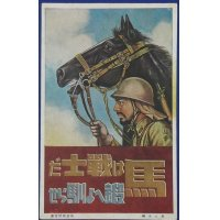 "1930's Postcard War Horse Slogan ""Horses are warriors. Train and tame them """