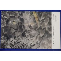 """1940's Pacific War Japanese Army Art Postcard """" Challenging the thorns """""""