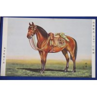"1939 Japanese Army War Horses Postcards ""Beloved Horses Memorial day & War Horses Festival"" ( War horse awarded for distinguished service )"