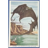"1930's Japanese Postcards : Dinosaurs Art "" Extinct Animals "" Pterosaur"