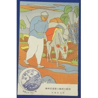 1930's Japanese Postcard : The Museum of Manchuria Natural Resources